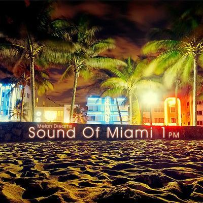 Sound Of Miami 1pm (2010)