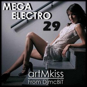 Mega Electro vol.29 (2010)