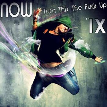 NOW Turn This The Fuck Up! IX (2010)