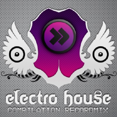 RM Electro House Vol.24 (2010)