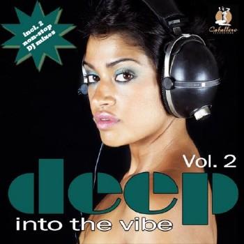 Deep Into The Vibe Vol 2 (2010)
