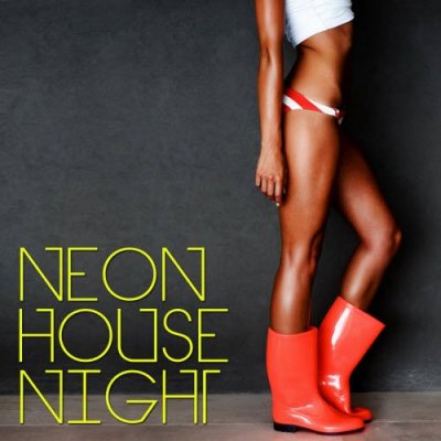 Neon House Night (2011)