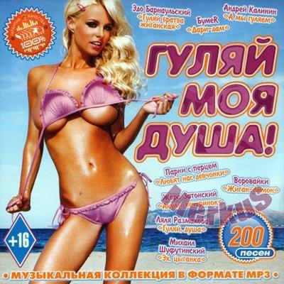 Гуляй Моя Душа! (2013)