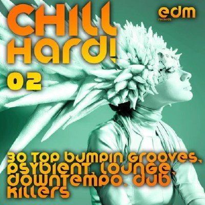 Chill Hard! Vol. 2 (2014)