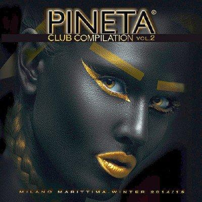 Pineta Club Compilation 2 (2014)