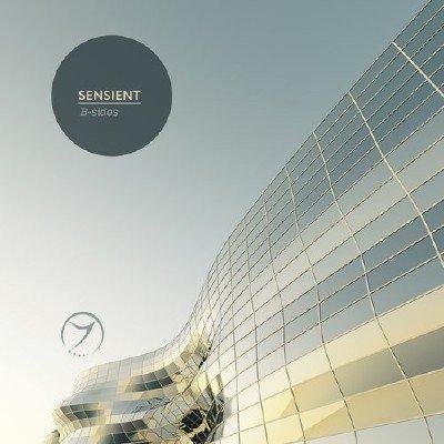 Sensient - B-Sides (2015)