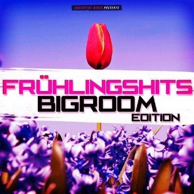 Fruhlingshits: Bigroom Edition (2015)