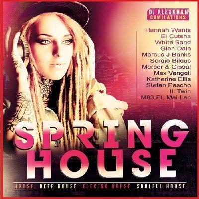 Spring House (2017)