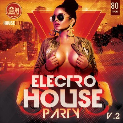 Electro House Rarty Vol.2 (2017)