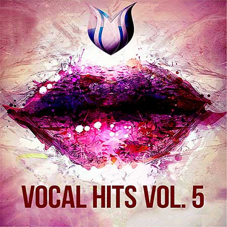 Vocal Hits Vol.5 (2020)